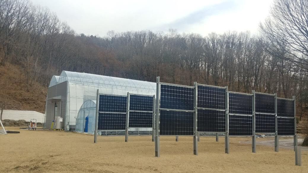 Solar Fence Seongang South Korea