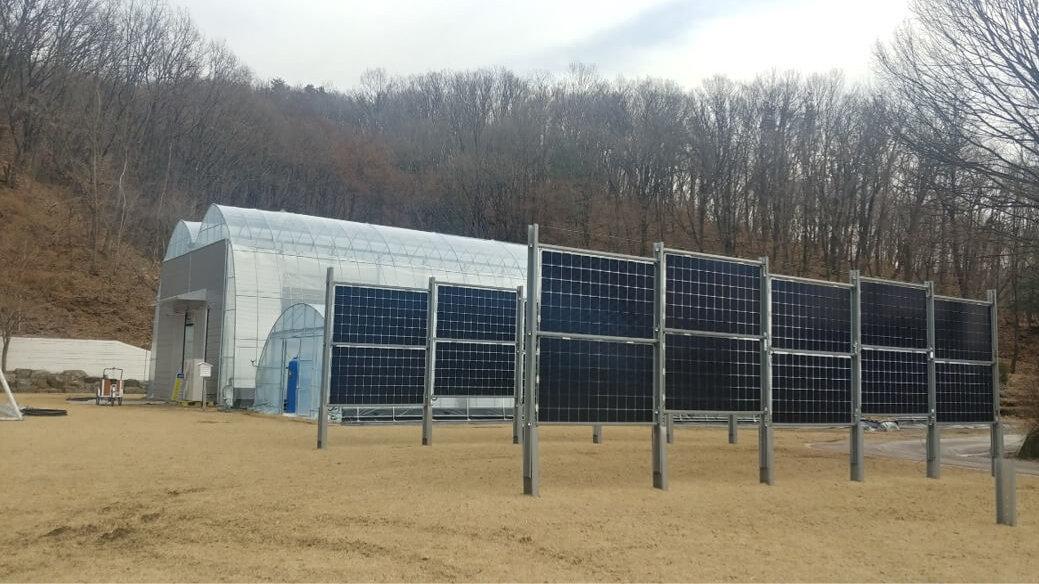 Solarzaun / Solar fence in Seongnam, Südkorea