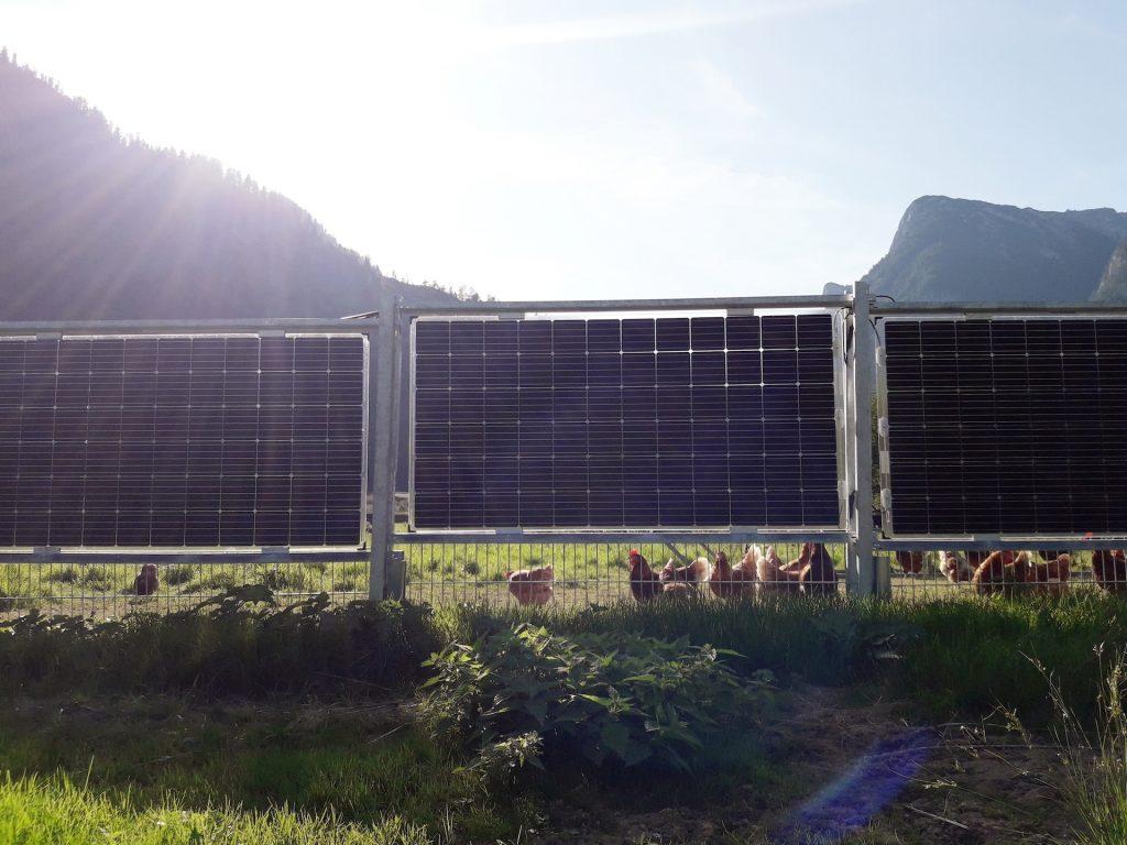 Solarzaun als Einfriedung
