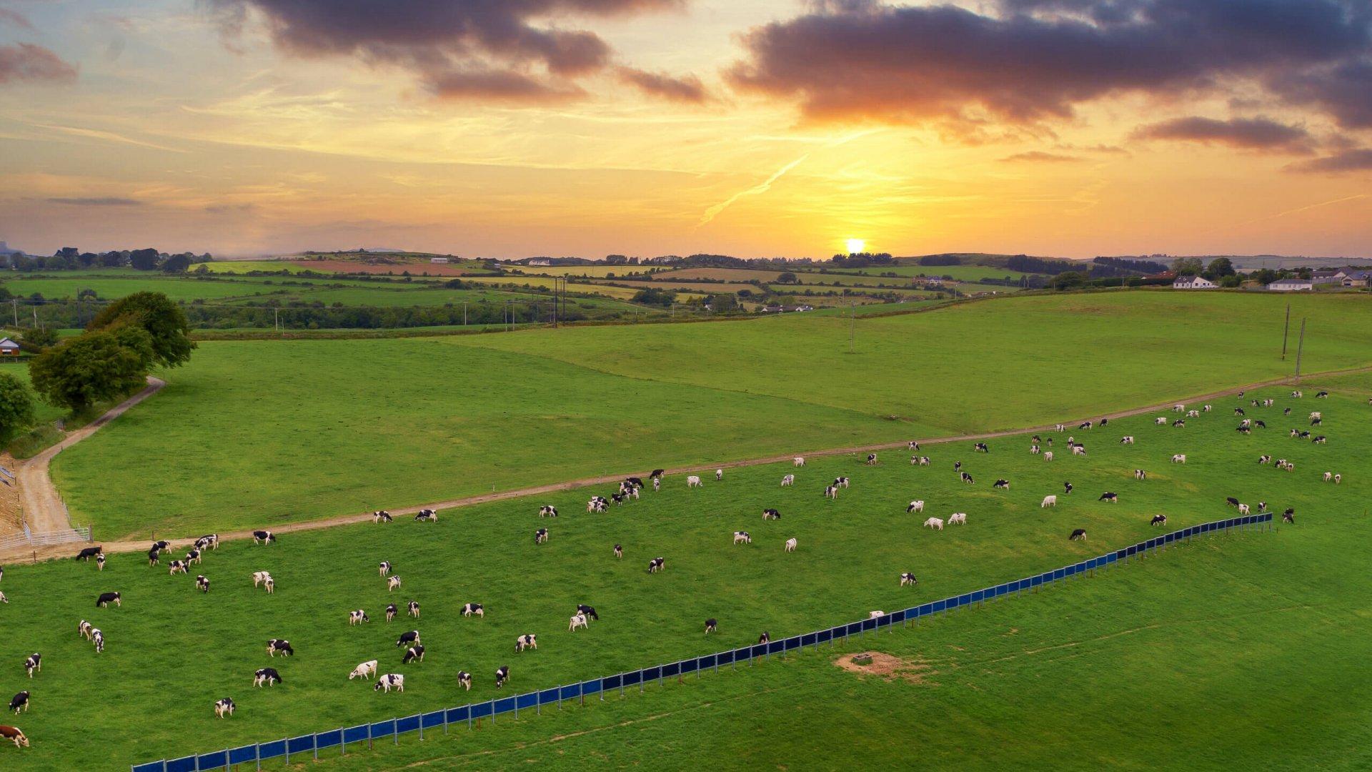Solarzaun / Solar fence in Waterford, Ireland (Sunstream Energy Ltd.)