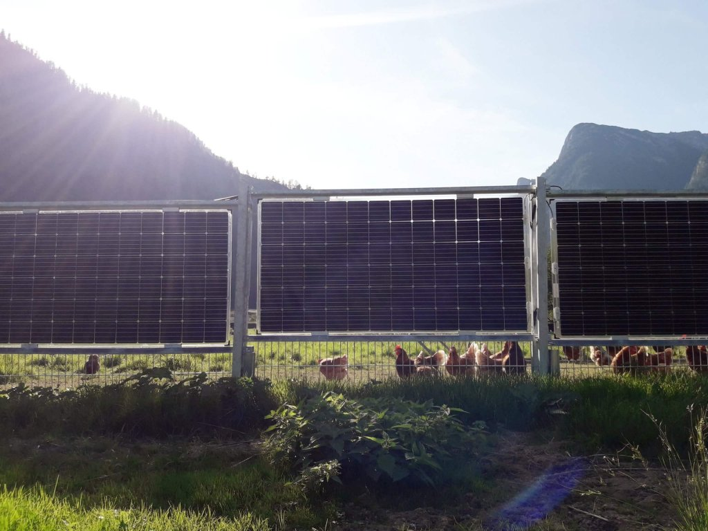 Solarfence as enclosure