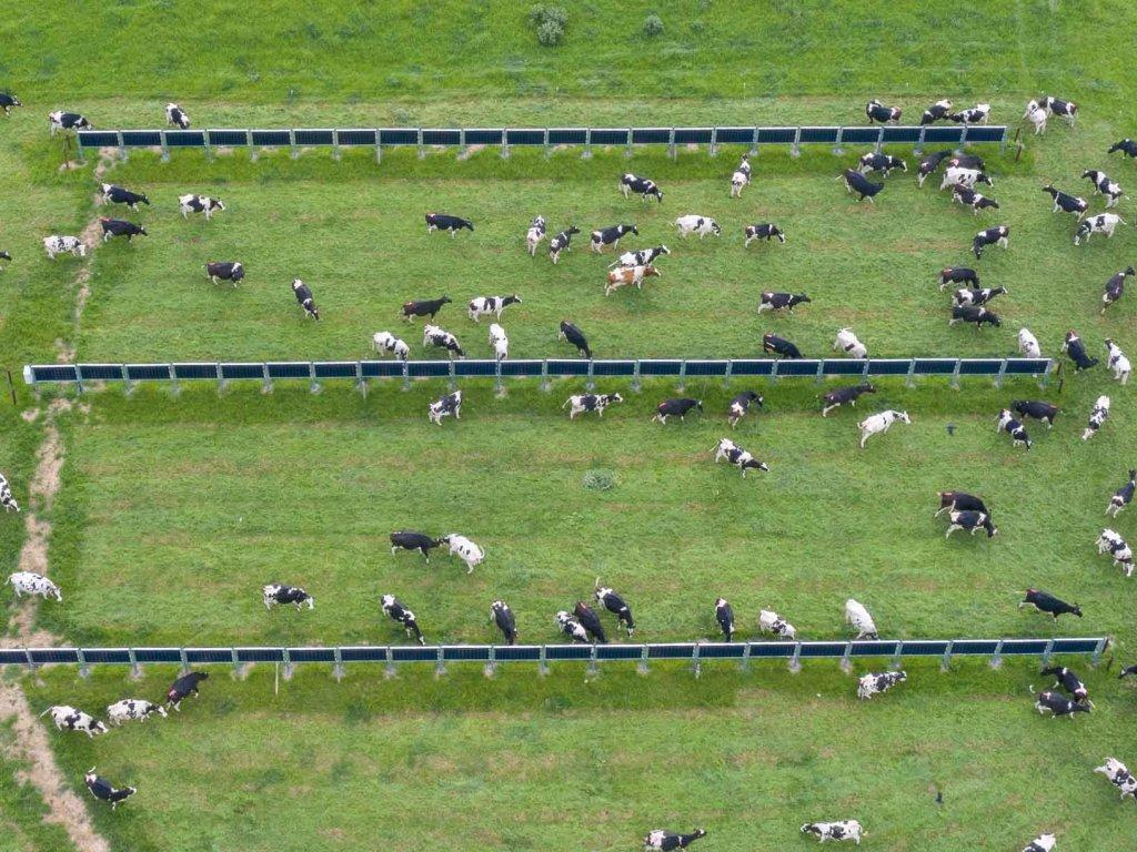 Solarpark Farrels (Irland) Vogelperspektive