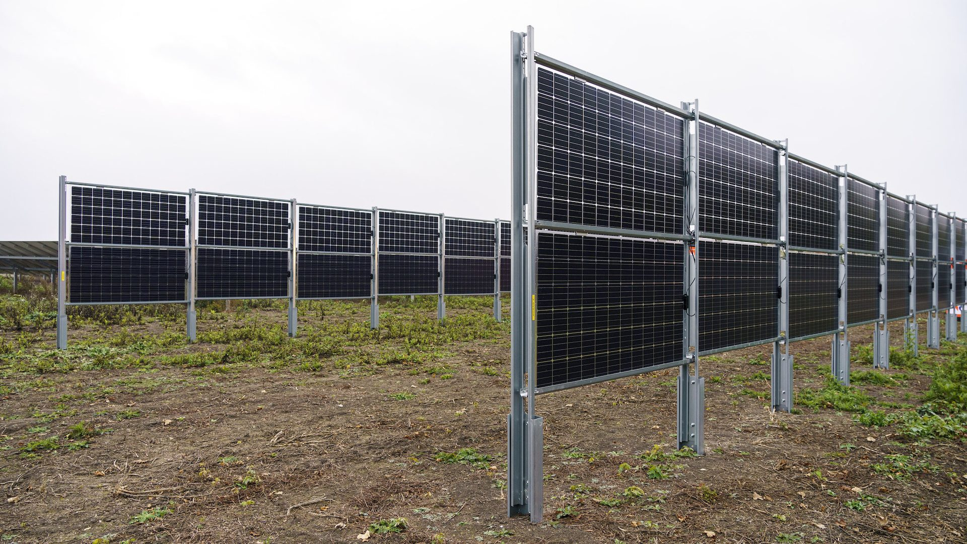 Abb.: Erste Agro-Photovoltaikanlage mit dem Next2Sun-Konzept in Gutramsdorf (Österreich)